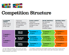 Competition structure flowchart